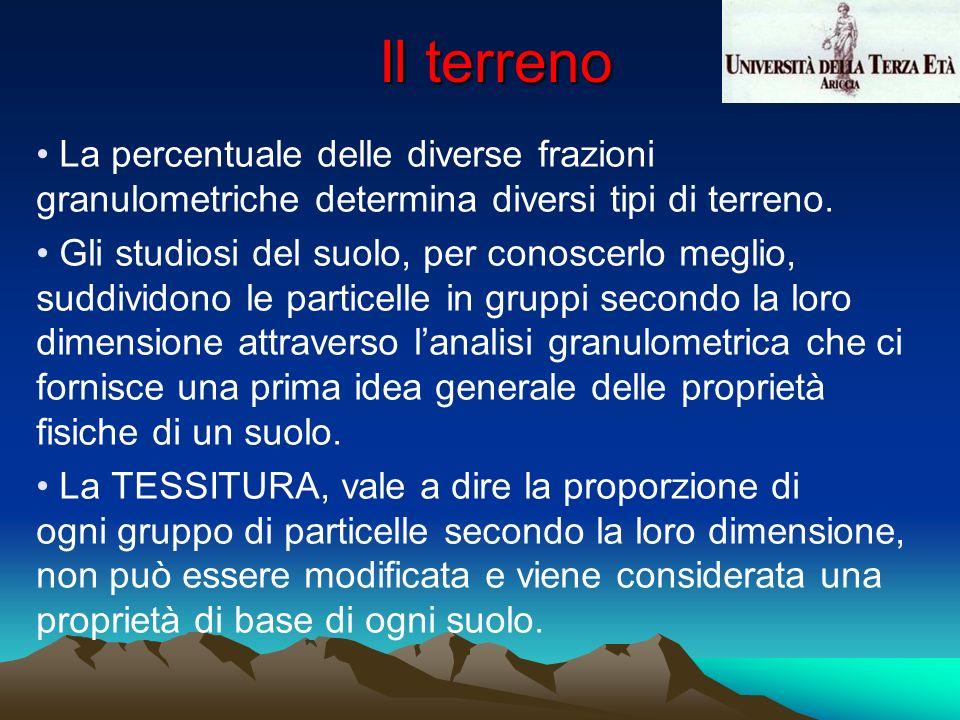 Il terreno La percentuale delle diverse frazioni granulometriche determina diversi tipi di terreno.