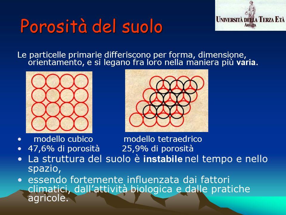 Porosità del suolo Le particelle primarie differiscono per forma, dimensione, orientamento, e si legano fra loro nella maniera più varia.