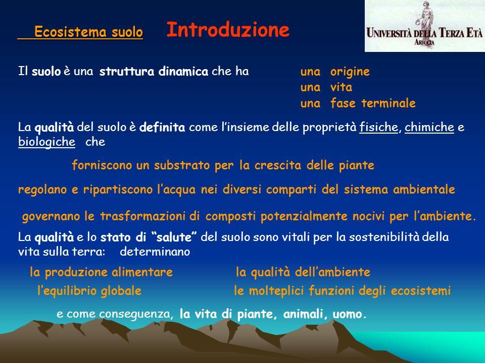 Ecosistema suolo Introduzione