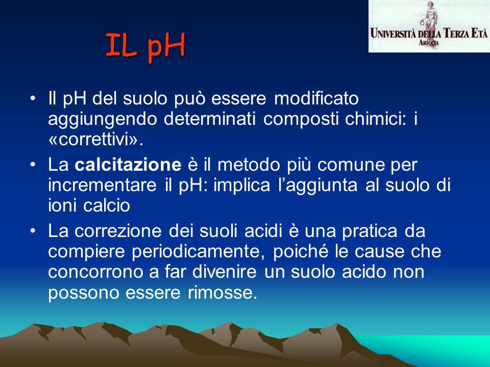 IL pH Il pH del suolo può essere modificato aggiungendo determinati composti chimici: i «correttivi».