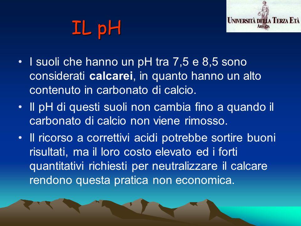 IL pH I suoli che hanno un pH tra 7,5 e 8,5 sono considerati calcarei, in quanto hanno un alto contenuto in carbonato di calcio.