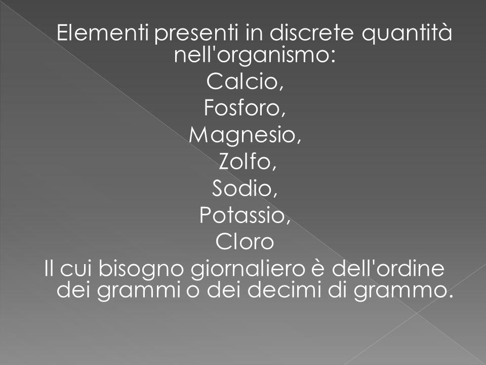 Elementi presenti in discrete quantità nell organismo: