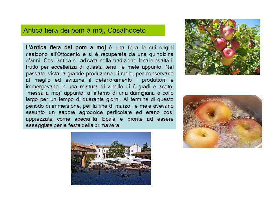 Antica fiera dei pom a moj, Casalnoceto