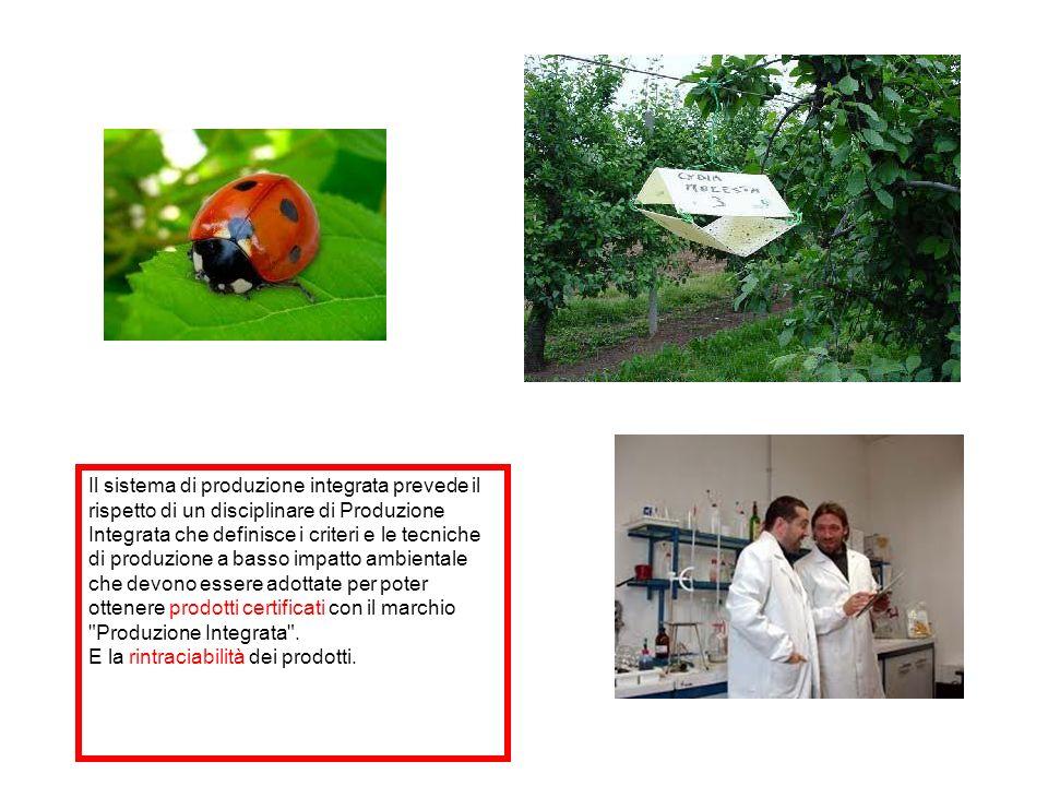 Il sistema di produzione integrata prevede il rispetto di un disciplinare di Produzione Integrata che definisce i criteri e le tecniche di produzione a basso impatto ambientale che devono essere adottate per poter ottenere prodotti certificati con il marchio Produzione Integrata .