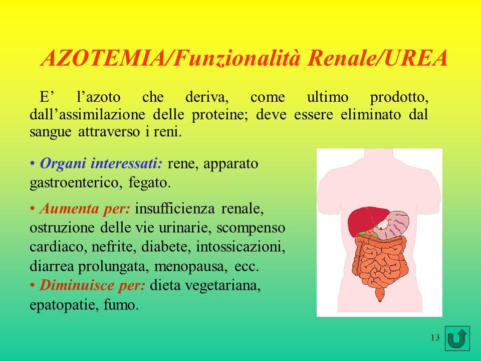 AZOTEMIA/Funzionalità Renale/UREA