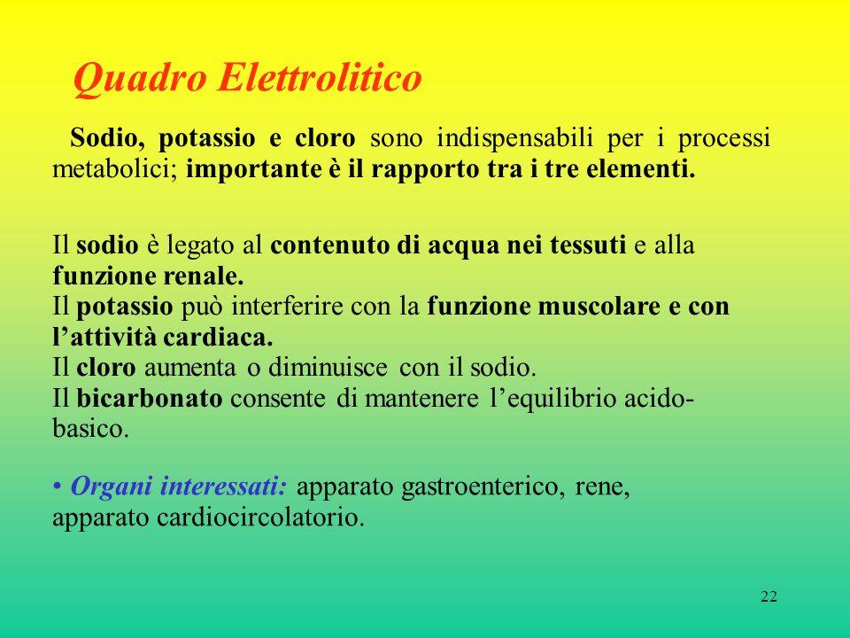 Quadro Elettrolitico Sodio, potassio e cloro sono indispensabili per i processi metabolici; importante è il rapporto tra i tre elementi.