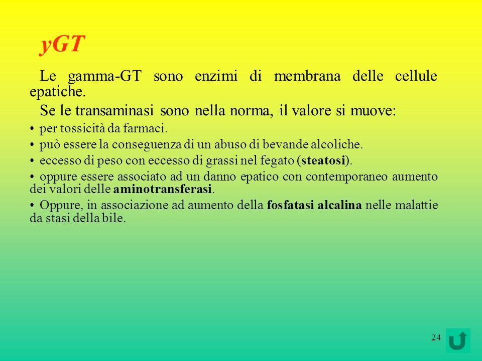 yGT Le gamma-GT sono enzimi di membrana delle cellule epatiche.