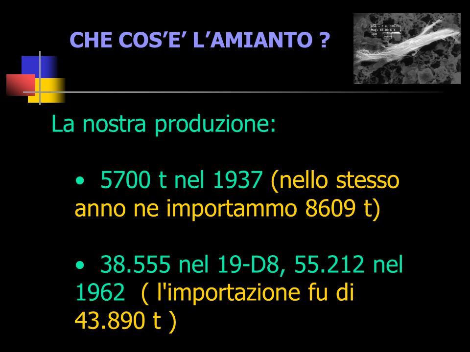 5700 t nel 1937 (nello stesso anno ne importammo 8609 t)