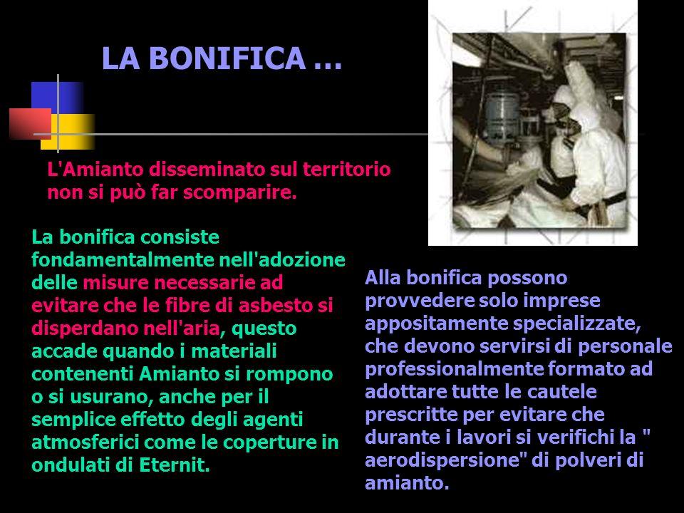 LA BONIFICA … L Amianto disseminato sul territorio non si può far scomparire.