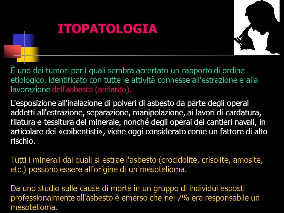 ITOPATOLOGIA