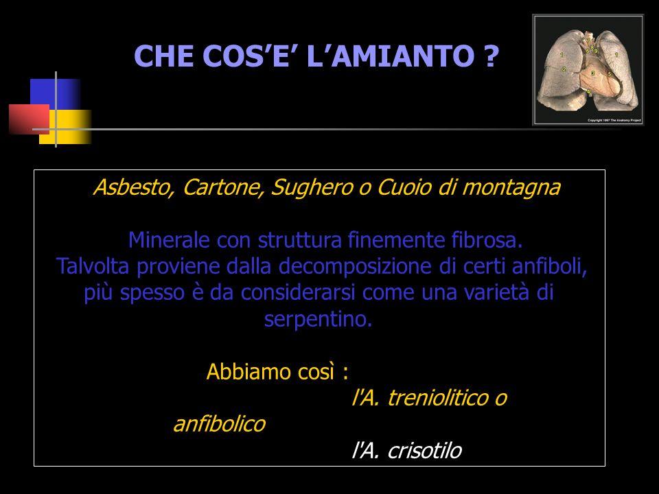 CHE COS'E' L'AMIANTO Asbesto, Cartone, Sughero o Cuoio di montagna