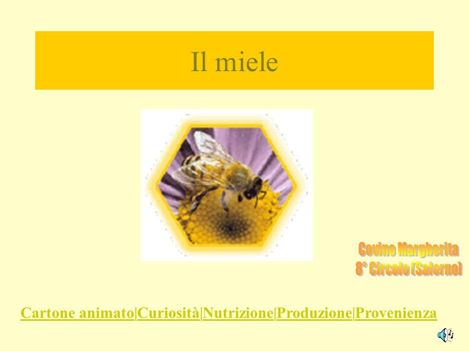 Il miele cartone animato curiosità nutrizione produzione