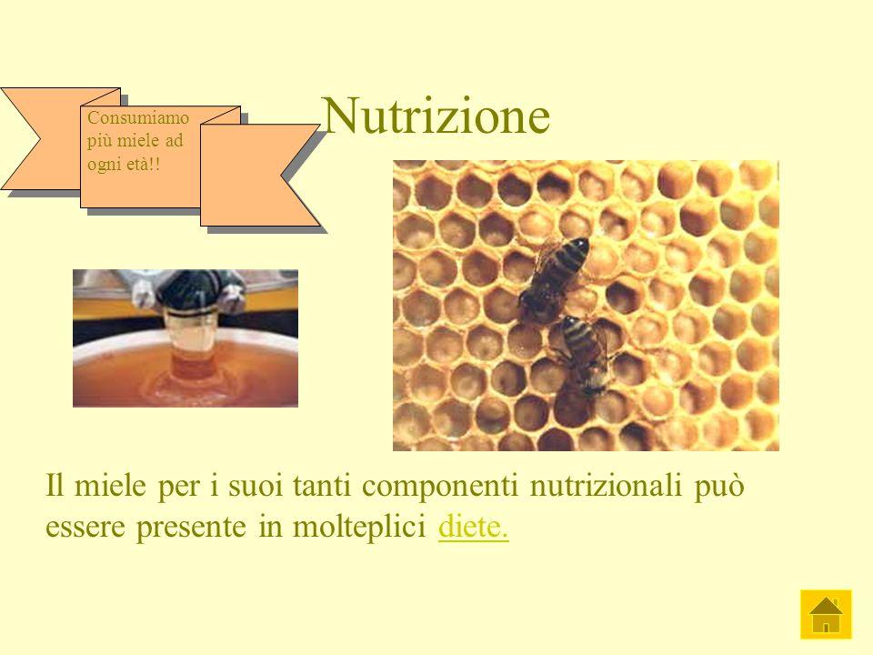 Nutrizione Il miele per i suoi tanti componenti nutrizionali può