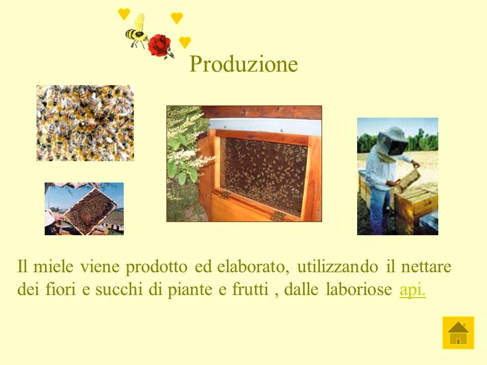 Produzione Il miele viene prodotto ed elaborato, utilizzando il nettare dei fiori e succhi di piante e frutti , dalle laboriose api.