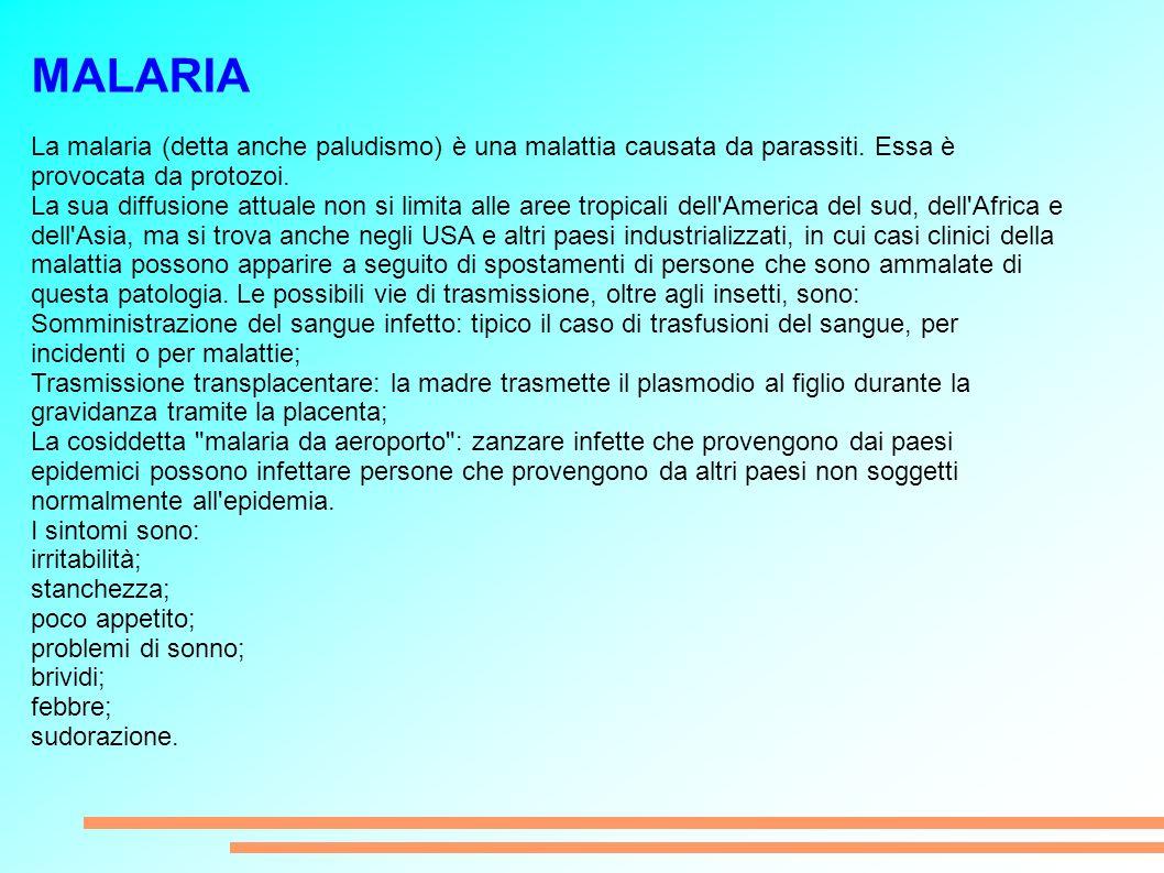 MALARIA La malaria (detta anche paludismo) è una malattia causata da parassiti. Essa è provocata da protozoi.