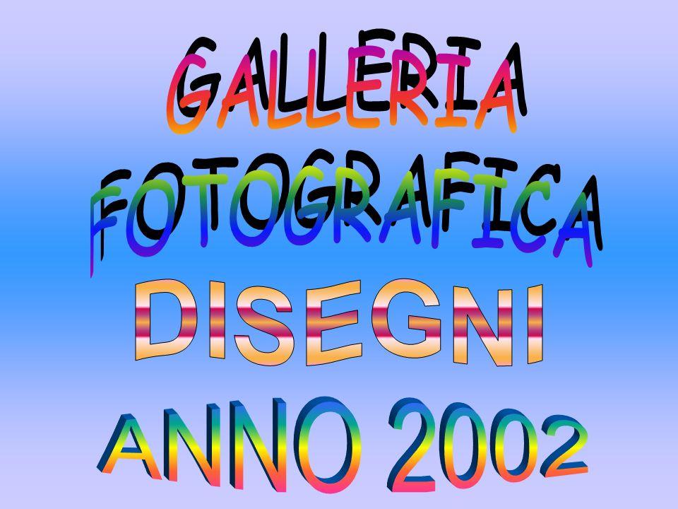 GALLERIA FOTOGRAFICA DISEGNI ANNO 2002