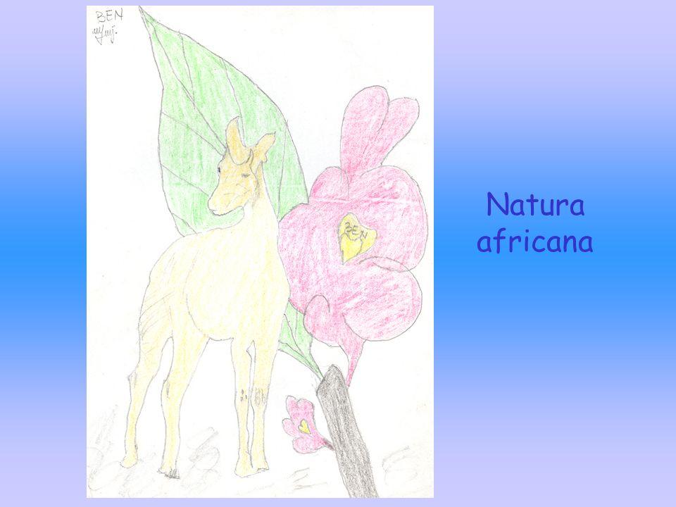 Natura africana