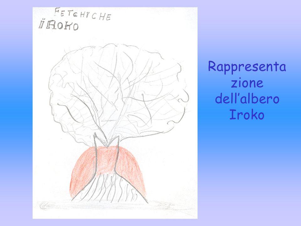 Rappresentazione dell'albero Iroko