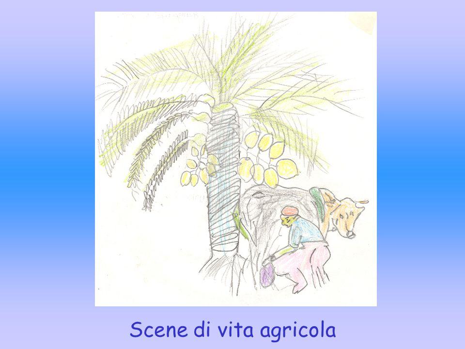 Scene di vita agricola