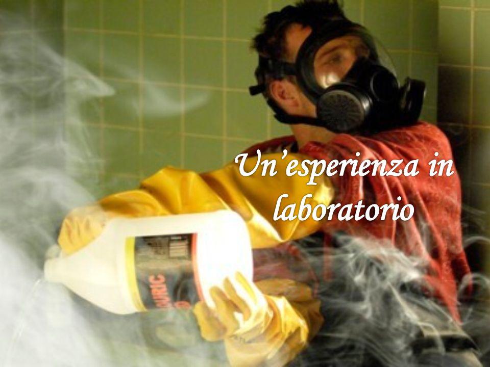 Un'esperienza in laboratorio