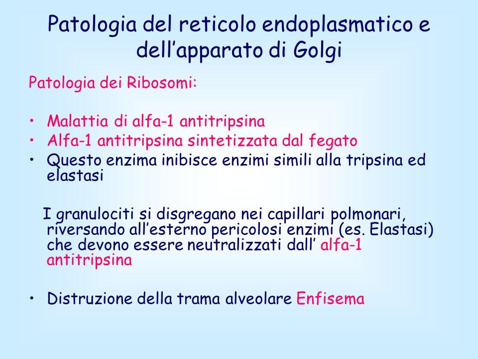 Patologia del reticolo endoplasmatico e dell'apparato di Golgi