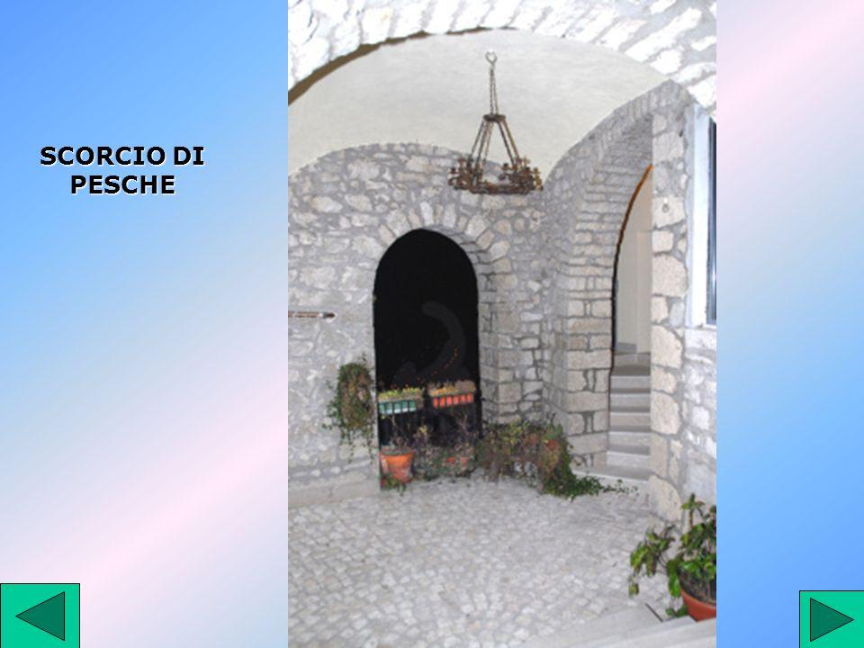 SCORCIO DI PESCHE