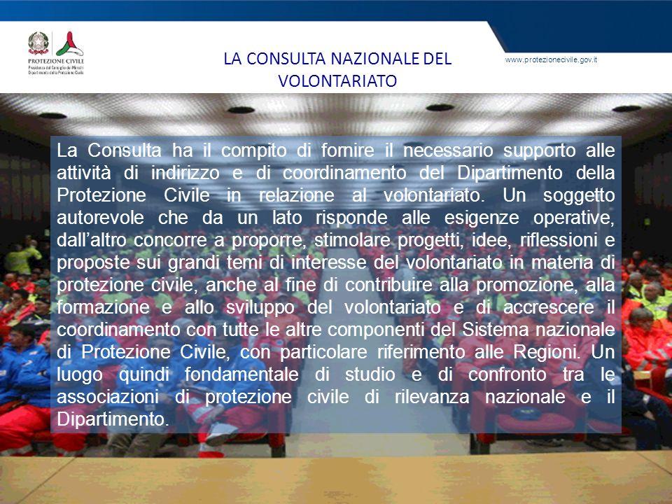 LA CONSULTA NAZIONALE DEL VOLONTARIATO
