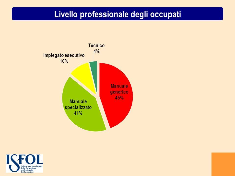 Livello professionale degli occupati