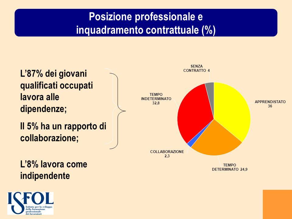 Posizione professionale e inquadramento contrattuale (%)