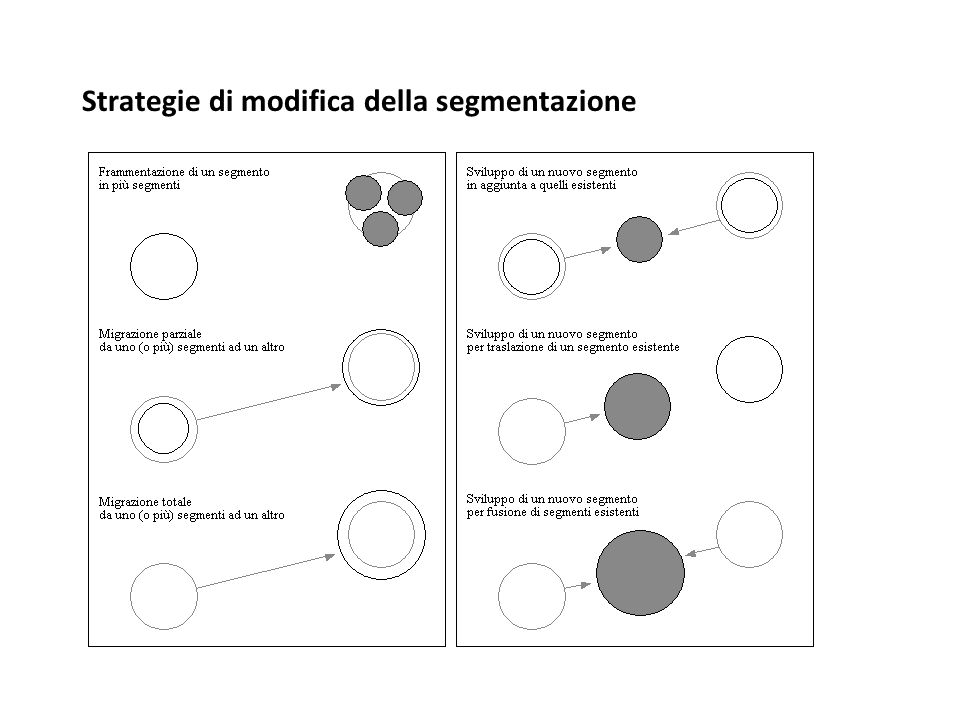 Strategie di modifica della segmentazione