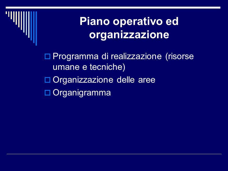 Piano operativo ed organizzazione