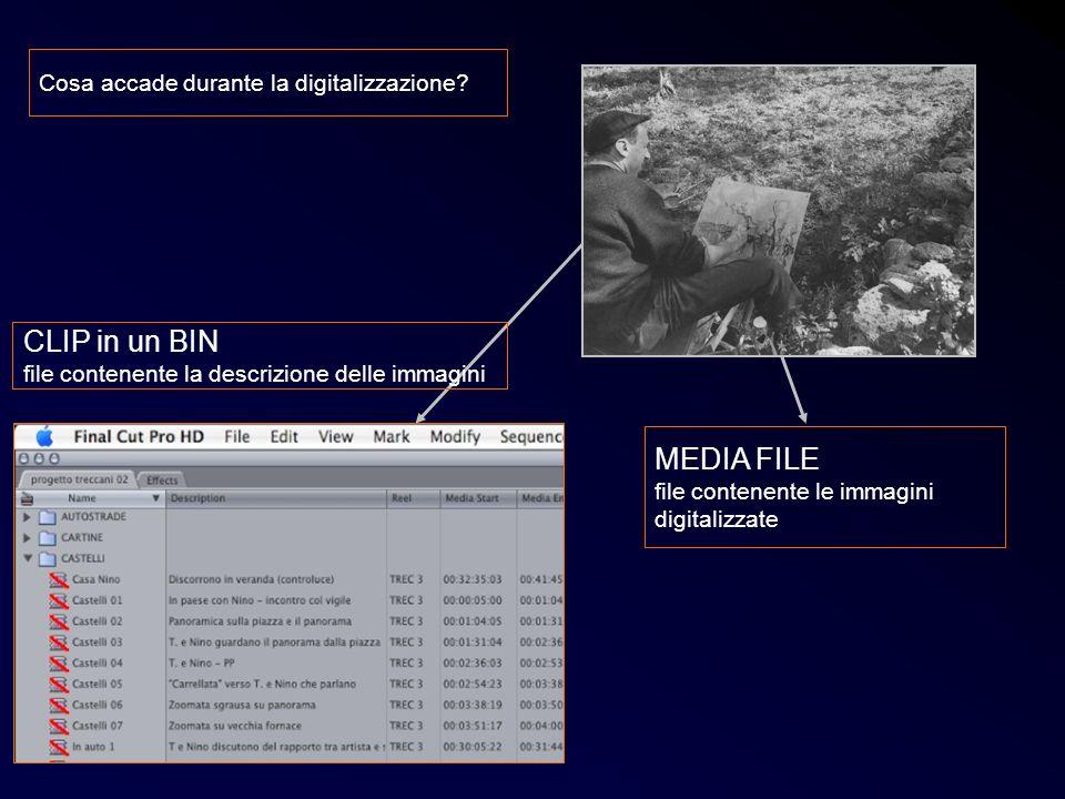 CLIP in un BIN MEDIA FILE Cosa accade durante la digitalizzazione