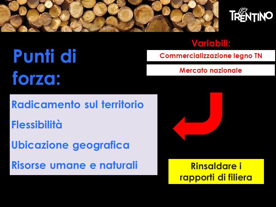 Commercializzazione legno TN