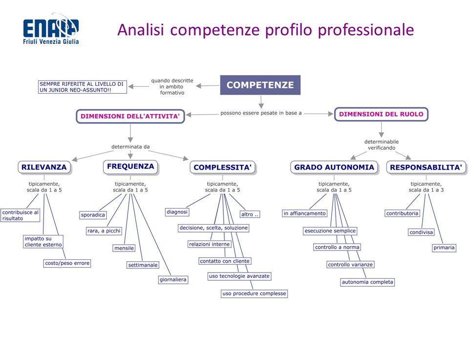 Analisi competenze profilo professionale