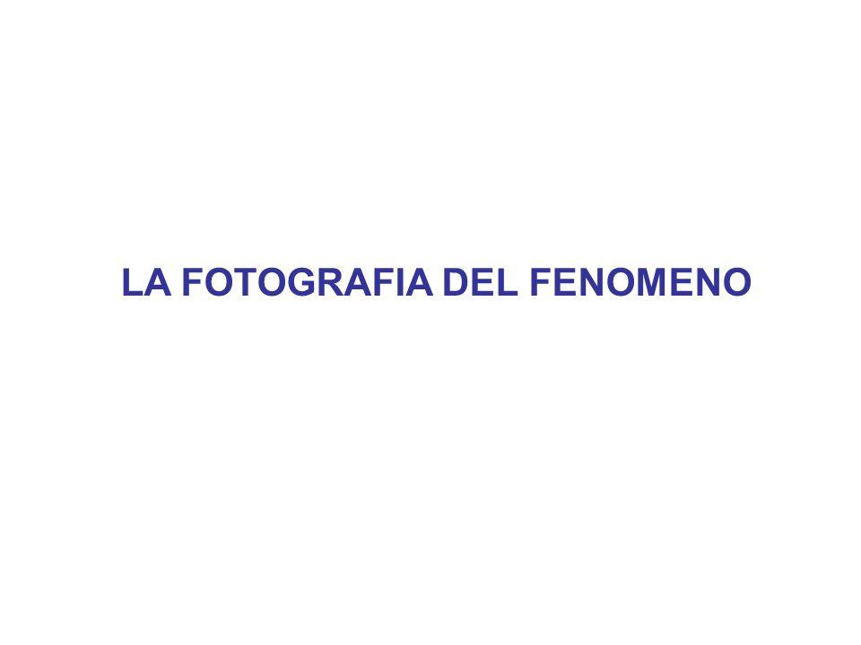 LA FOTOGRAFIA DEL FENOMENO