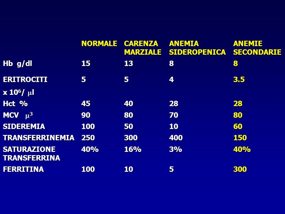 NORMALE CARENZA MARZIALE. ANEMIA SIDEROPENICA. ANEMIE SECONDARIE. Hb g/dl. 15. 13. 8. ERITROCITI.