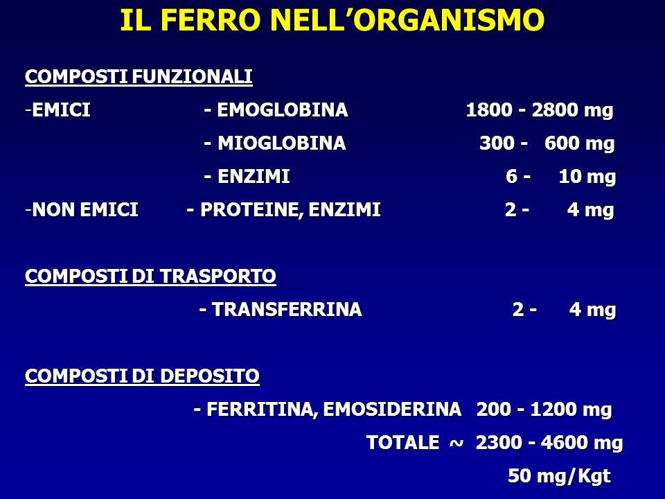 IL FERRO NELL'ORGANISMO