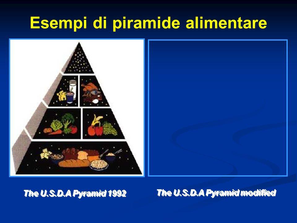 Esempi di piramide alimentare