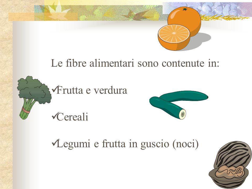 Le fibre alimentari sono contenute in: