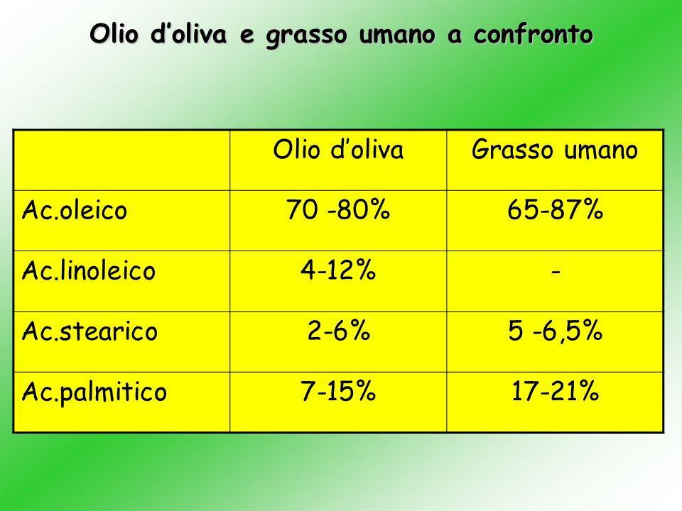 Olio d'oliva e grasso umano a confronto