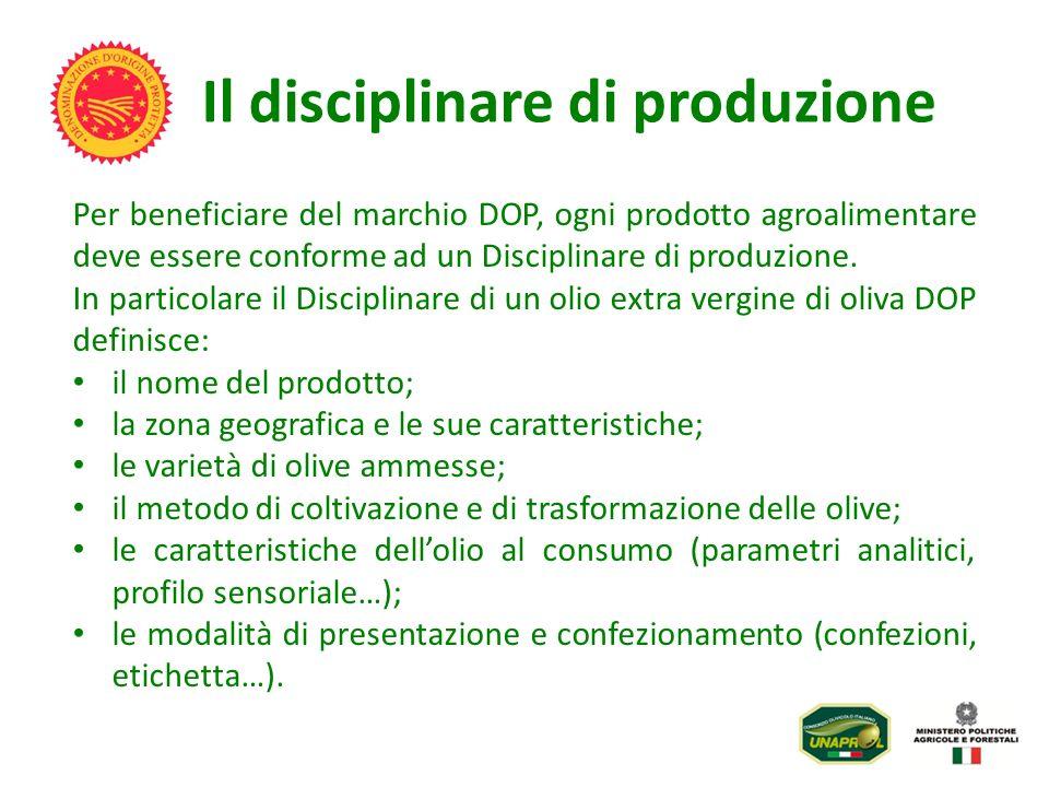 Il disciplinare di produzione