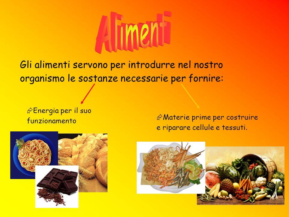 Alimenti Gli alimenti servono per introdurre nel nostro organismo le sostanze necessarie per fornire:
