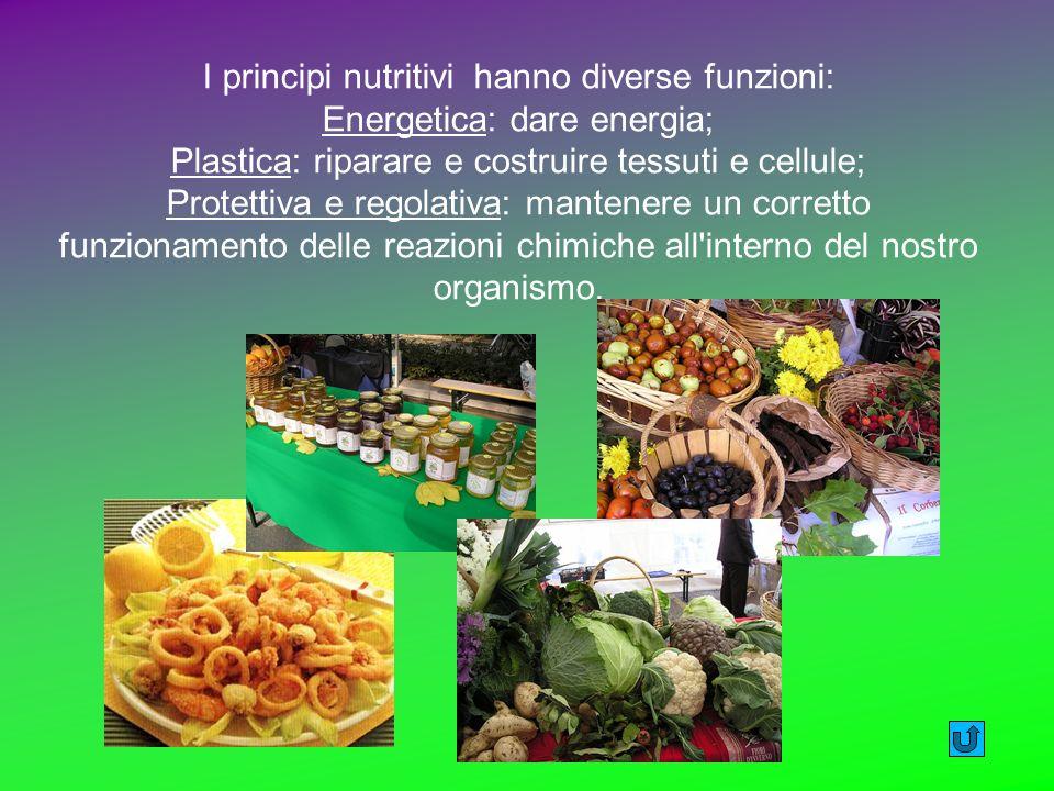 I principi nutritivi hanno diverse funzioni: Energetica: dare energia;