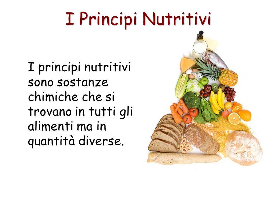 I Principi Nutritivi I principi nutritivi sono sostanze chimiche che si trovano in tutti gli alimenti ma in quantità diverse.