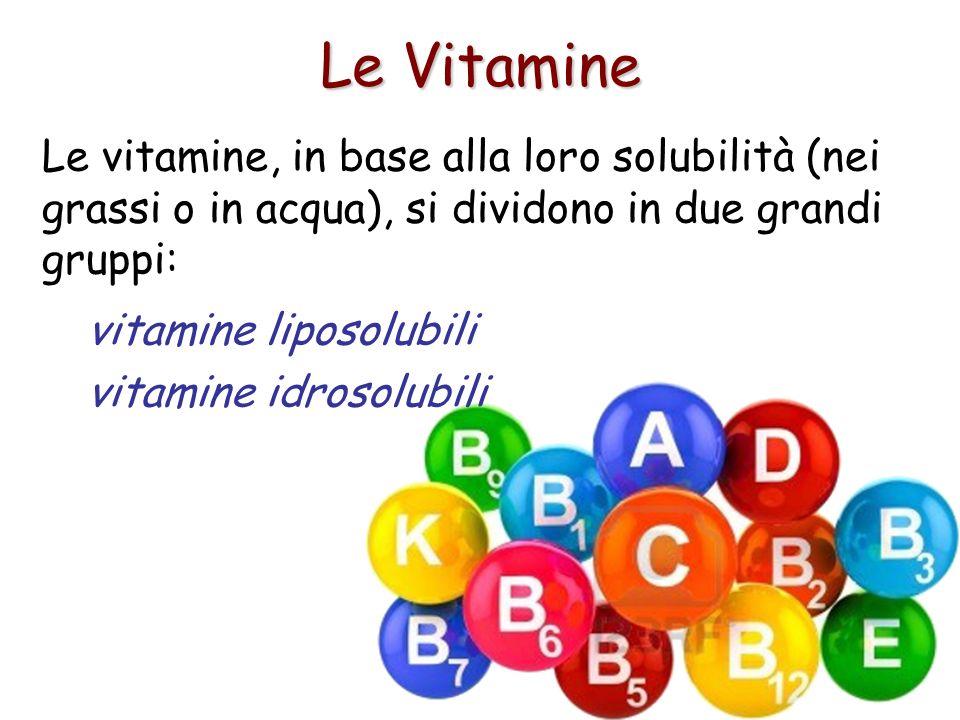 Le Vitamine Le vitamine, in base alla loro solubilità (nei grassi o in acqua), si dividono in due grandi gruppi: