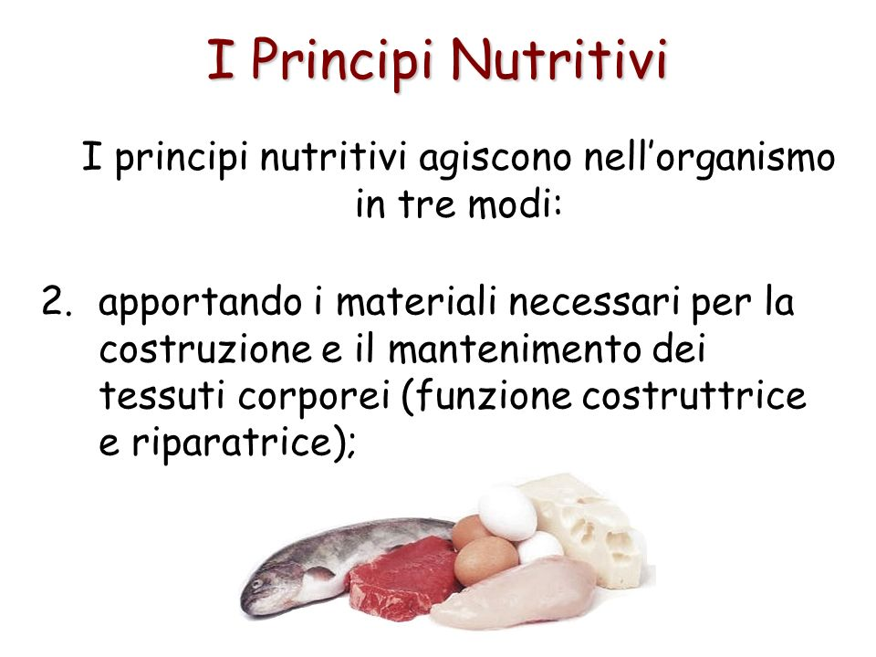 I principi nutritivi agiscono nell'organismo in tre modi: