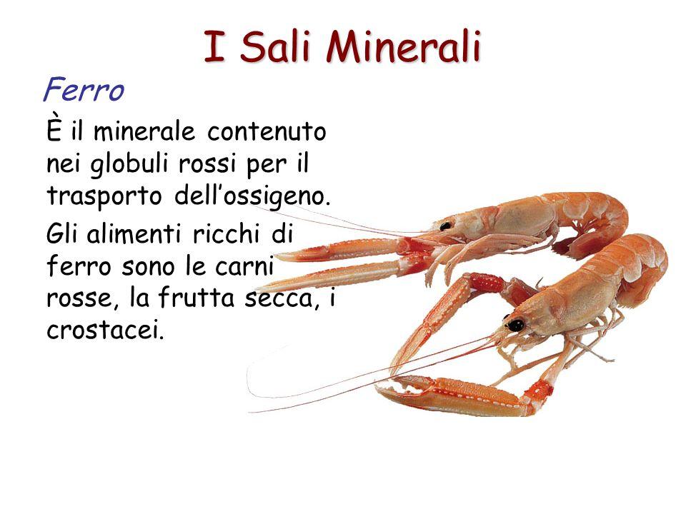 I Sali Minerali Ferro. È il minerale contenuto nei globuli rossi per il trasporto dell'ossigeno.