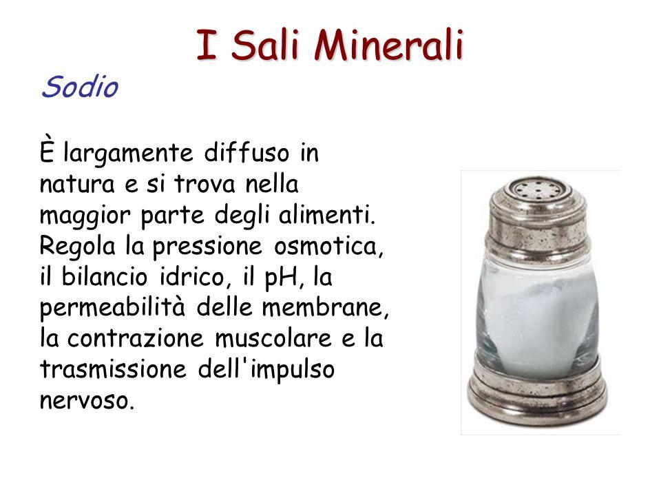 I Sali Minerali Sodio.