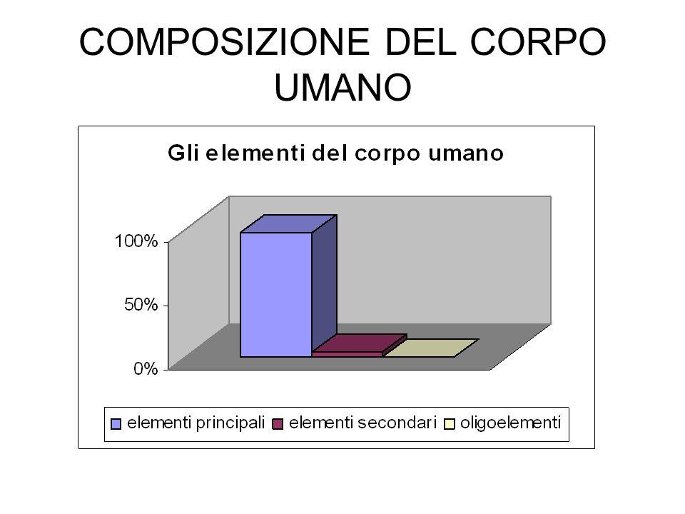 COMPOSIZIONE DEL CORPO UMANO