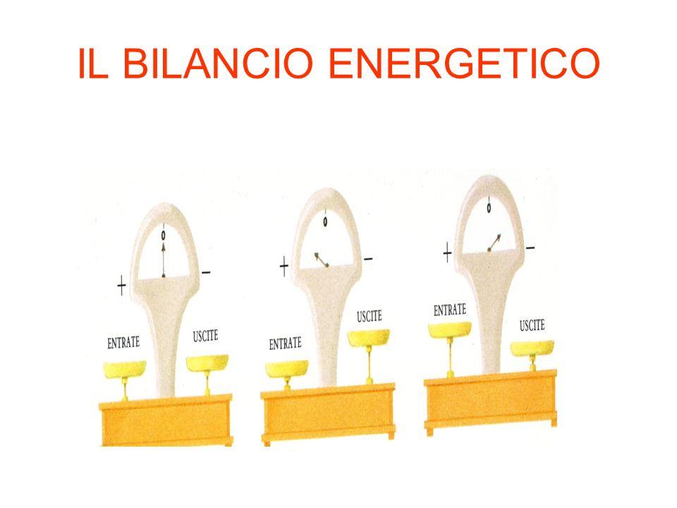 IL BILANCIO ENERGETICO